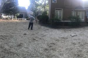 Before-Seeding