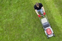 Lawn Care Service Chesapeake, VA