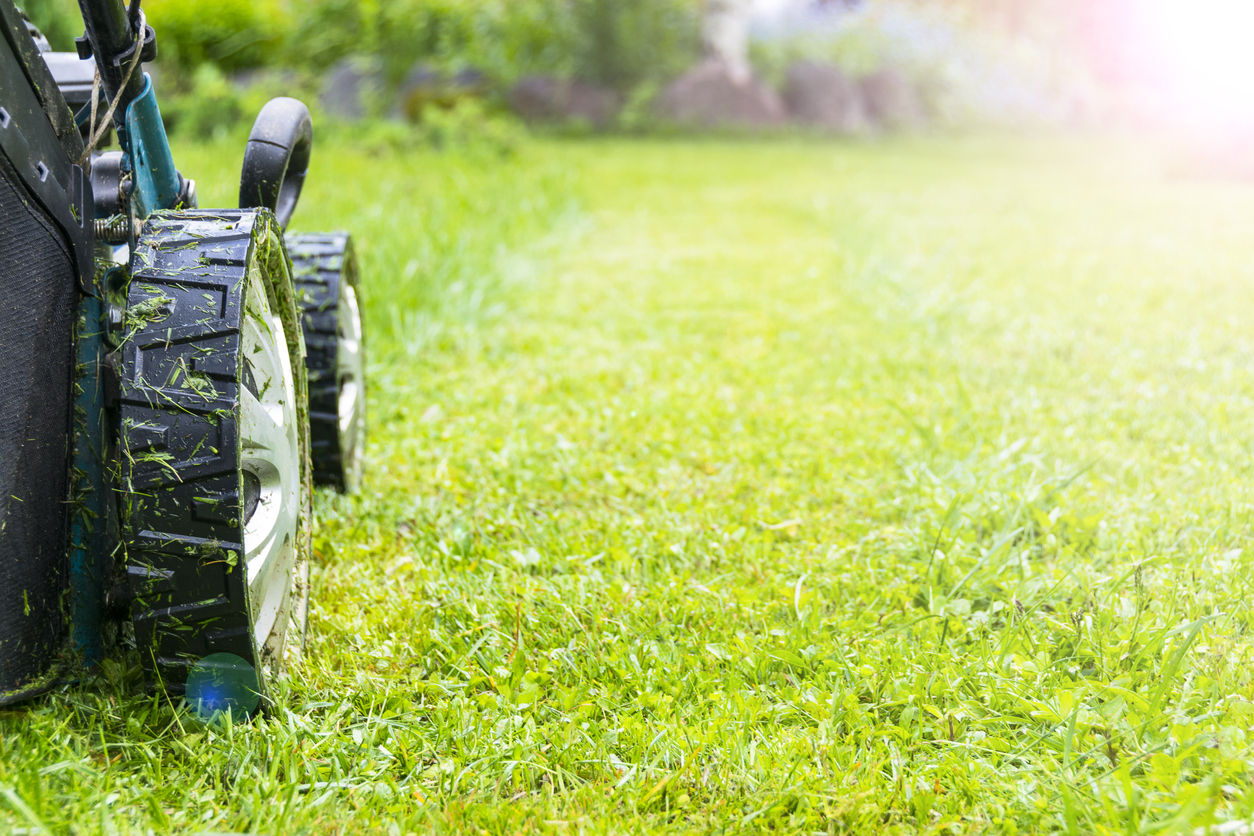 landscaping contractor in Chesapeake