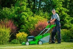 lawn care service in Great Bridge VA